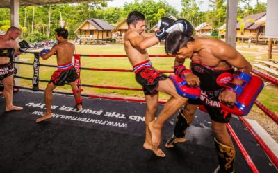 Muay Thai – The best training experience for beginners and professionals
