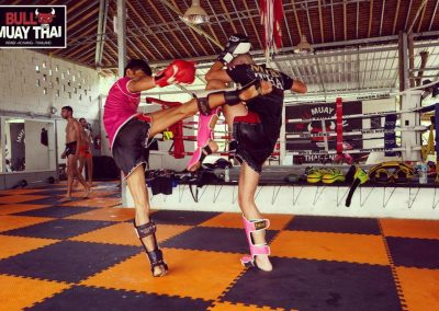 Bull Muay Thai Fighting Practice