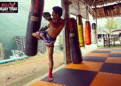 Bull Muay Thai Training Bag Kick