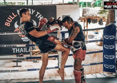bull-muay-thai-training-on-ring
